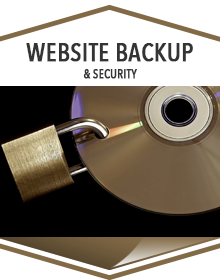 Website backup and Security